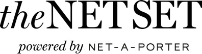 the netset wordmark